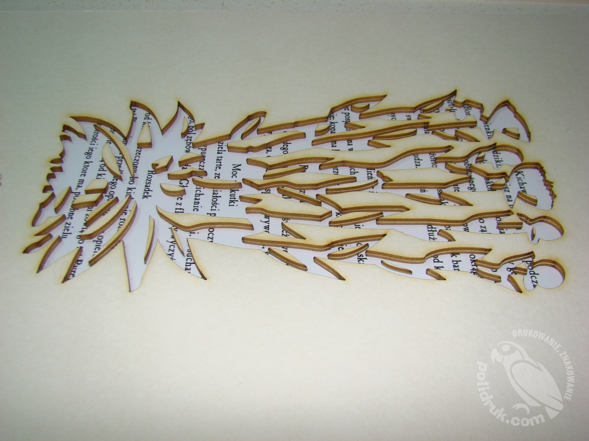 Cięcie laserem tektury i kartonu| polidruk.com